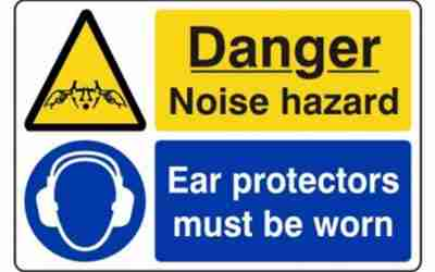 Noise Risk Assessments